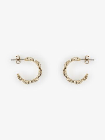Lia creol earrings PIECES gold colour